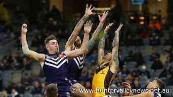 Hawks finals hopes on edge after AFL loss - Hunter Valley News