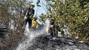 Wilnsdorf: Feuerwehr verhindert Waldbrand am A45-Zubringer - Westfalenpost
