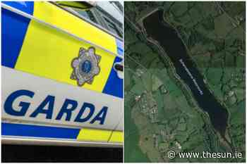 Teenage boy, 13, dies after getting into difficulty swimming in Dublin reservoir - The Irish Sun