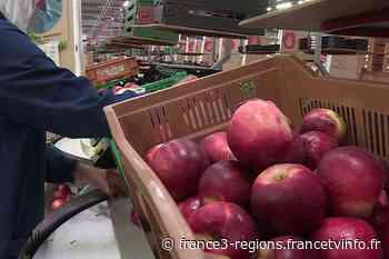 Pyrénées-Orientales : la production de pêches et de nectarines du Roussillon en baisse de 20% en 2020 - France 3 Régions
