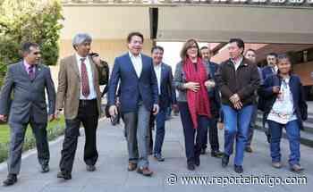 Mayoría piensa que Delgado sería mejor presidente de Morena que Polevnsky - Reporte Indigo