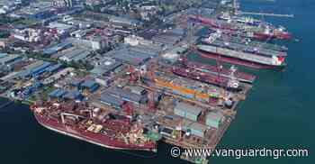 FG engages Chinese firm to build shipyard in Bayelsa - Vanguard