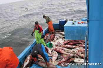 Pescadores se unen para combatir pesca ilegal china en Galápagos - IPS Agencia de Noticias