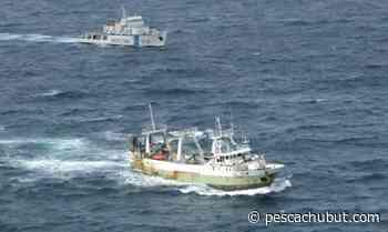 Nación busca elevar las multas a la pesca ilegal en aguas de Malvinas - pescachubut.com