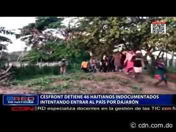 CESFRONT detiene 46 haitianos indocumentados intentando entrar al país por Dajabón - CDN