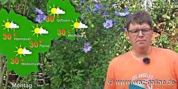 Das Wettervideo für Wolfsburg vom 10. bis 14. August 2020 - Wie lange bleibt es noch warm? - Wolfsburger Allgemeine