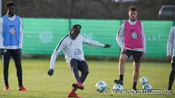 """""""Nicht sehr an mich geglaubt"""": Osimhen erklärt sein Scheitern in Wolfsburg - Sportbuzzer"""