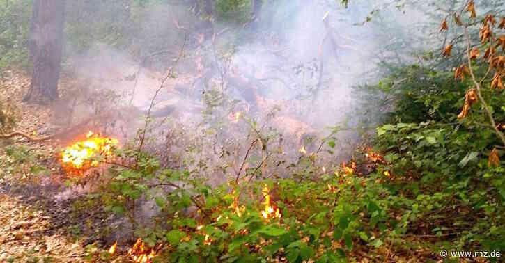 Waldbrandgefahr:  Grillen im Strandbad verboten