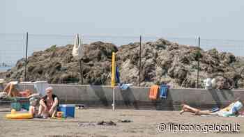 A Grado spiaggia con cumuli di alghe in mezzo a bagnanti e bimbi - Il Piccolo
