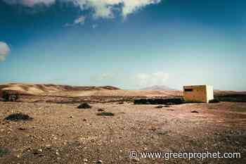 The Al Baydha Project: How Regenerative Agriculture Revived Green Life In A Saudi Arabian Desert - Green Prophet