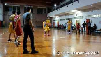 Primo colpo di mercato per il Polverigi Basket: ufficiale l'arrivo di Marco Burzacchini - Promozione Marche - Basketmarche.it
