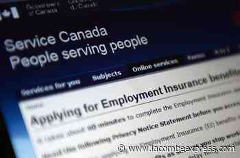 Ottawa sets minimum unemployment rate at 13.1% for EI calculation - Lacombe Express