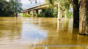 Riverside properties urged to prepare for rising water - Parkes Champion-Post