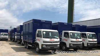 Fadel Transportes tem vagas para motoristas entregadores em Presidente Prudente-SP - Blog do Caminhoneiro
