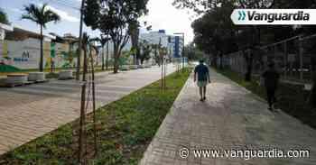 Así luce la 'Calle de Las Letras', otra vía peatonalizada en Bucaramanga - Vanguardia