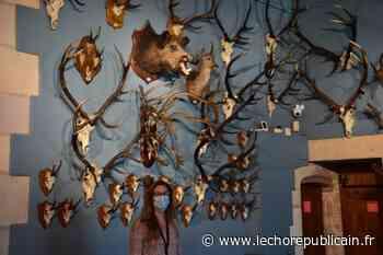 La chasse dans tous ses états au château-musée de Gien, dans le Loiret - Echo Républicain