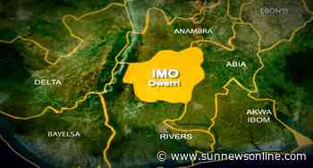 Minister lauds businessman for building factory in Imo – The Sun Nigeria - Daily Sun