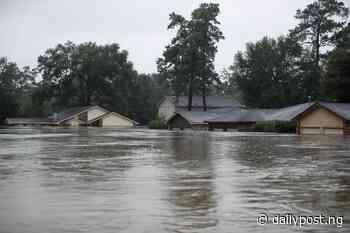 Flood destroys 110 houses in Zamfara - Daily Post Nigeria