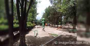 Impera la inseguridad en la Alameda García Salinas de Jerez - Imagen de Zacatecas, el periódico de los zacatecanos
