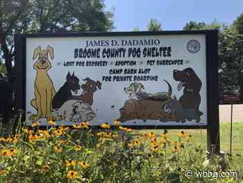 Broome County Dog Shelter opens to public - WBNG-TV