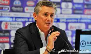 Non solo il Milan guarda in Svezia: sondaggio Fiorentina per Abraham - Calciomercato.com