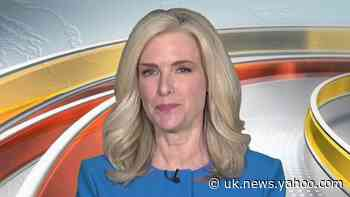 Fox News' Janice Dean dropped from witness list on hearing into New York nursing home deaths