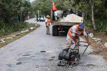 Refuerzan actividades de Servicios Públicos en Playa del Carmen - Palco Quintanarroense