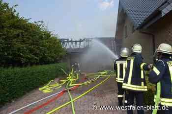 Polizei kommt Brandursachen auf die Spur - Westfalen-Blatt