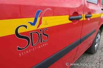 Champs-sur-Marne : un homme décède dans l'incendie de son logement - Le Parisien