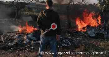 Bitonto, sorpreso dai carabinieri mentre appicca il fuoco - La Gazzetta del Mezzogiorno