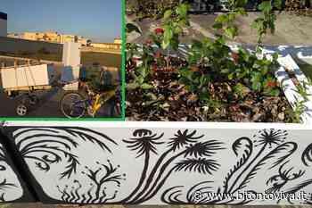 A Bitonto i frigoriferi abbandonati diventano fioriere - BitontoViva