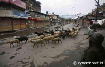 Setelah 15 Agustus, Layanan 4G Dibuka Sebagian di Kashmir dan Jammu - CyberNews