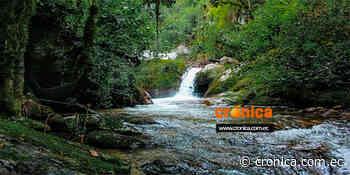Protección y restauración de las fuentes de agua en el cantón Loja - Diario Crónica (Ecuador)