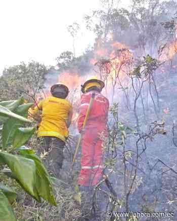 Hasta siete incendios forestales se registran al día - La Hora (Ecuador)