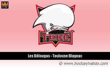 Hockey sur glace : D2 : Mouvement à Toulouse/Blagnac - Transferts 2019/2020 : Toulouse-Blagnac (Les Belougas) | Hockey Hebdo - hockeyhebdo Toute l'actualité du hockey sur glace