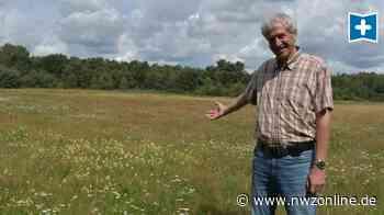 """Ausgleichsflächen In Ganderkesee: So sieht """"Bauland"""" für die Natur aus - Nordwest-Zeitung"""