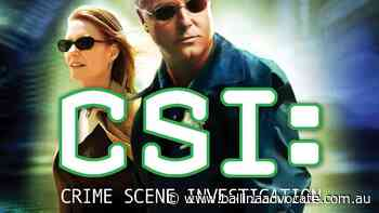 Kidnapper had watched 'all the CSI shows' - Ballina Shire Advocate