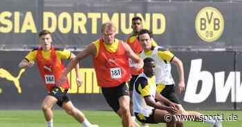 Bundesliga: Erling Haaland schwärmt im Trainingslager von Borussia Dortmund von Youssoufa Moukoko - SPORT1
