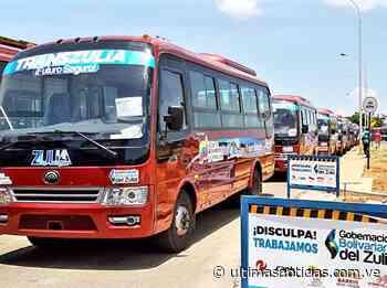 Habilitan 110 unidades de transporte público en el Zulia - Últimas Noticias