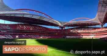 Fase inédita arranca com duelo entre PSG e Atalanta na Luz - SAPO Desporto