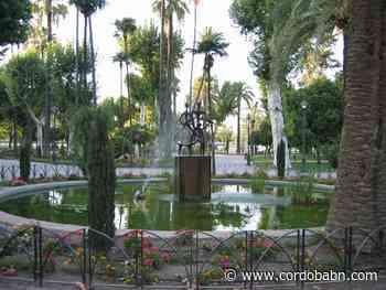 Covid en Córdoba este miércoles: 13 altas, 0 UCIS, 0 fallecimientos, 3 ingresos y 38 nuevos casos - Córdoba Buenas Noticias