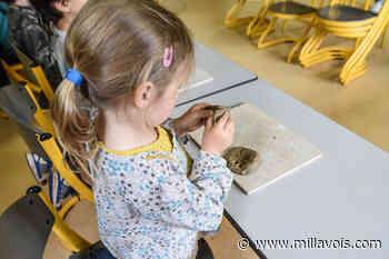 Millau. Des vacances archéologiques à la Graufesenque - Millavois.com