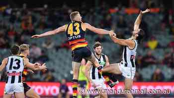 Collingwood cruise to AFL win over Crows - Mandurah Mail