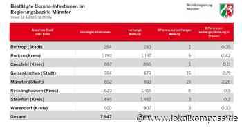 Stadt Gelsenkirchen: aktuell Infizierte 68 (88), insgesamt Infizierte 694 (679), Verstorbene 19 (19), Genesene 607 (572): Aktuell 420 Corona-Infektionen im Regierungsbezirk Münster - Gelsenkirchen - Lokalkompass.de