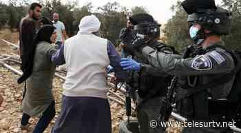 """Condenan calificar de """"terrorista"""" a organización palestina - teleSUR TV"""