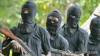 Gunmen kill man, pregnant wife, two others in Bayelsa - The Punch