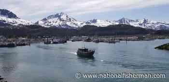Alaska salmon: Bristol Bay a bright spot on landings; Cordova declares disaster - National Fisherman