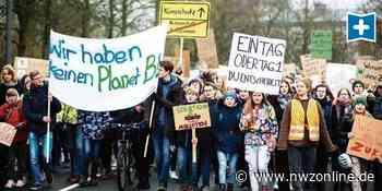 Fridays For Future: Oldenburg soll Vorzeigestadt beim Klimaschutz werden - Nordwest-Zeitung
