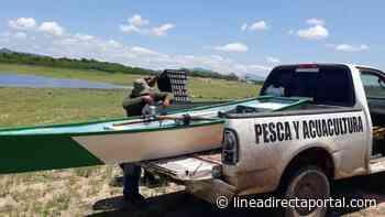 Autoridades retienen lanchas en El Fuerte; realizan operativos para atacar la pesca clandestina - Linea Directa
