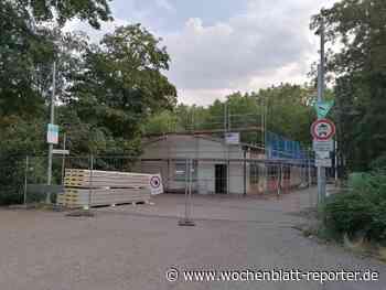 Neues vom Bauamt Mutterstadt: Die Dachkostruktion der Walderholungsstätte wird erneuert - Mutterstadt - Wochenblatt-Reporter